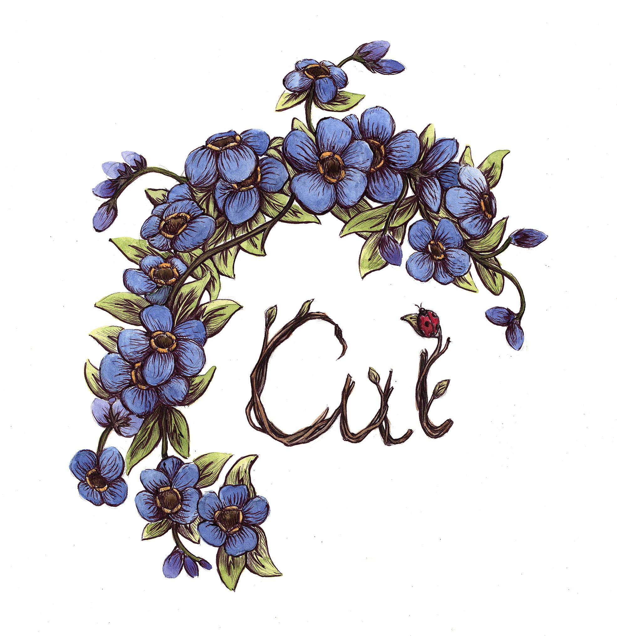 Cui Creates